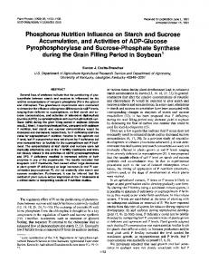 Phosphorus Nutrition Influence on Starch and ... - Plant Physiology