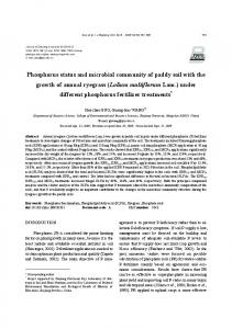 Phosphorus status and microbial community of paddy soil with the