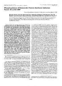 Phosphorylation of Eukaryotic Protein Synthesis Initiation Factor 4E at ...