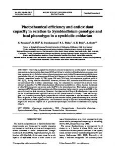 Photochemical efficiency and antioxidant capacity in relation to ...