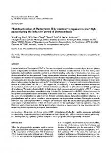 Photoinactivation of photosystem II by cumulative ... - Springer Link