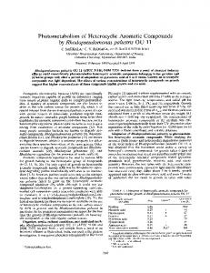 Photometabolism of Heterocyclic Aromatic Compounds - Applied and ...