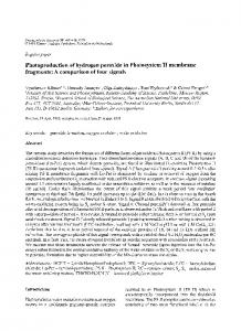 Photoproduction of hydrogen peroxide in Photosystem ... - Springer Link