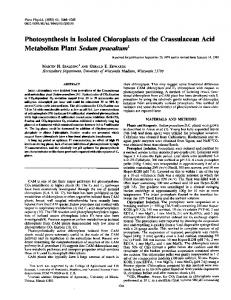 Photosynthesis in Isolated Chloroplasts of the Crassulacean Acid ...