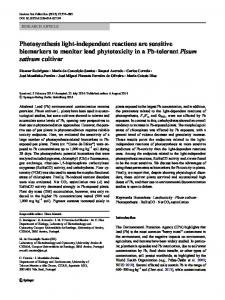 Photosynthesis light-independent reactions are ... - Springer Link
