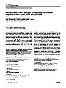 Photosynthetic electron transport and specific ...