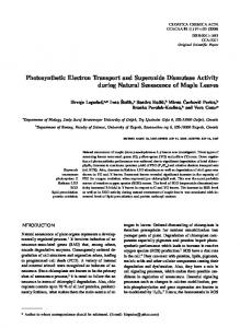 Photosynthetic Electron Transport and Superoxide Dismutase Activity ...