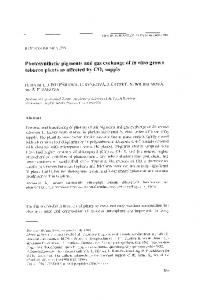 Photosynthetic Pigments and Gas Exchange of in vitro Grown Tobacco ...