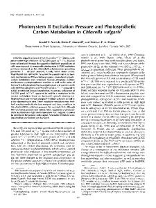 Photosystem II Excitation Pressure and ... - Plant Physiology