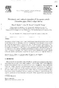 Phototaxis and vertical migration of the queen conch