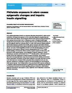 Phthalate exposure in utero causes epigenetic changes and impairs