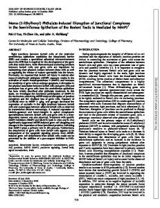 Phthalate-Induced Disruption of Junctional Complexes in the ...