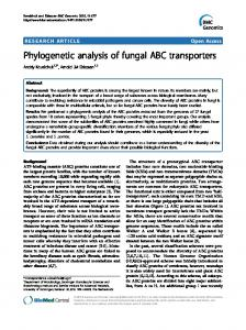 Phylogenetic analysis of fungal ABC transporters - Core