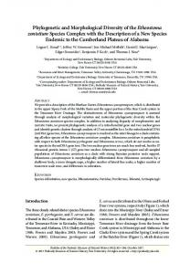 Phylogenetic and Morphological Diversity of the ...