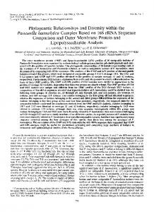 Phylogenetic Relationships and Diversity within the Pasteurella ...
