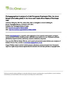 Phylogeographical Analysis of a Cold-Temperate