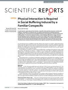 Physical Interaction Is Required in Social Buffering