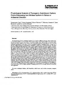 Physiological analysis of transgenic Arabidopsis thaliana plants
