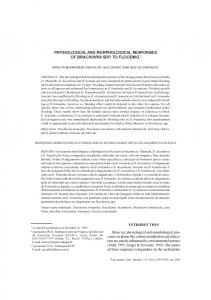 physiological and morphological responses of brachiaria spp ... - Ainfo