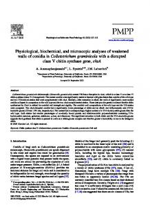 Physiological, biochemical, and microscopic ... - Semantic Scholar