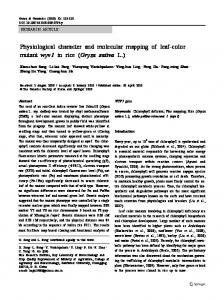 Physiological character and molecular mapping of leaf ... - Springer Link