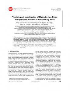Physiological Investigation of Magnetic Iron Oxide ...