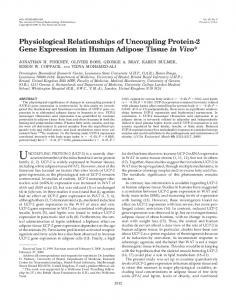 Physiological Relationships of Uncoupling Protein