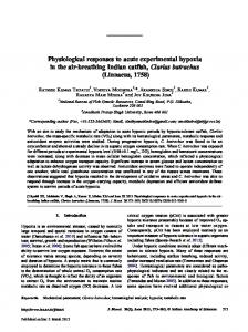 Physiological responses to acute experimental hypoxia in the air ...