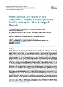 Phytochemical Determination and Antibacterial Activity of Punica ...