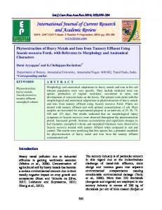 Phytoextraction of Heavy Metals and Ions from Tannery Effluent Using ...