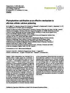 Phytoplankton calcification as an effective ... - Biogeosciences