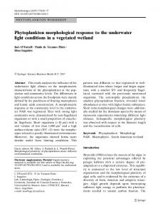 Phytoplankton morphological response to the underwater light ...