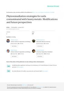Phytoremediation strategies for soils contaminated
