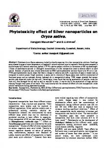 Phytotoxicity effect of Silver nanoparticles on Oryza