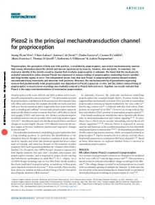 Piezo2 is the principal mechanotransduction channel ...