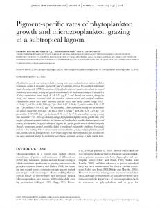 Pigment-specific rates of phytoplankton growth and