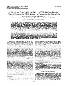 Pilins Is Essential for DNA Binding by Competent Bacillus subtilis