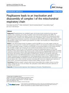 Pioglitazone leads to an inactivation and disassembly ... - Springer Link