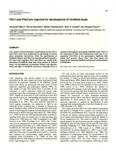 Pitx1 and Pitx2 are required for development of hindlimb buds