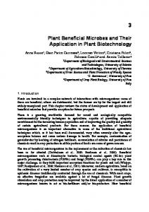 Plant Beneficial Microbes and Their Application in
