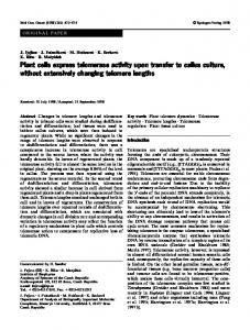 Plant cells express telomerase activity upon transfer to ... - Springer Link