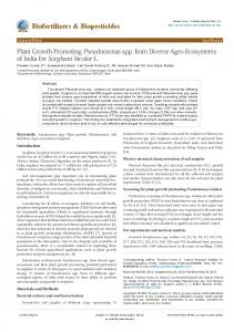 Plant Growth Promoting Pseudomonas spp. from Diverse Agro ...