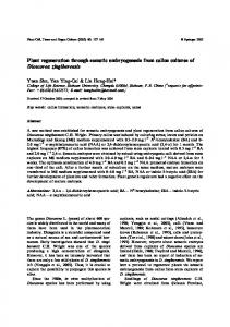 Plant regeneration through somatic embryogenesis ... - Springer Link