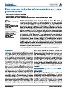 Plant responses to Agrobacterium tumefaciens and crown ... - Frontiers