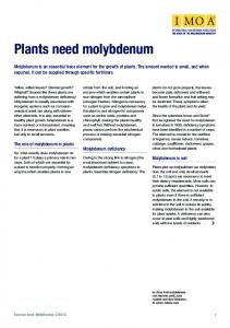 Plants need molybdenum - International Molybdenum Association