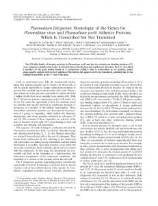 Plasmodium falciparum Homologue of the Genes for Plasmodium ...
