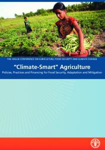 Policies, Practices and Financing for Food Security, Adaptation, and ...