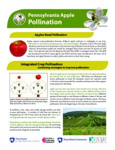 Pollination - The Integrated Crop Pollination Project