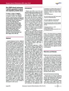 Poly (ADP-ribose) polymerase 1 protein expression in ... - CiteSeerX