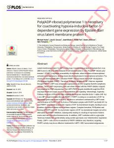 Poly(ADP-ribose) polymerase 1 is necessary for coactivating ... - PLOS
